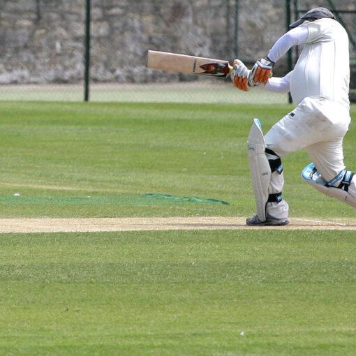 js19-cricket-table-renovator